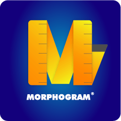 Consulenza nutrizionale Morphogram